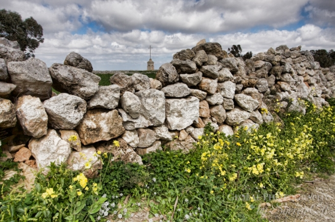 A planning application contemplating the sanctioning of the construction of a random rubble boundary wall including fixing of timber gate, was turned down by the Environment and Planning Commission (File photo)