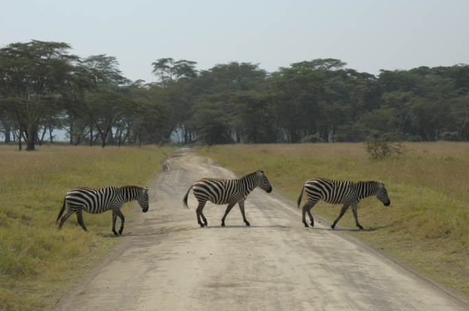 Take a couple of snaps and head off for the final leg of the journey, to the reserve itself