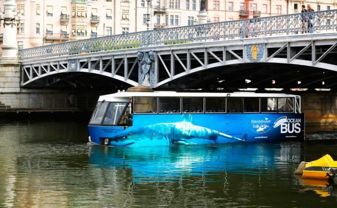 The Ocean Bus