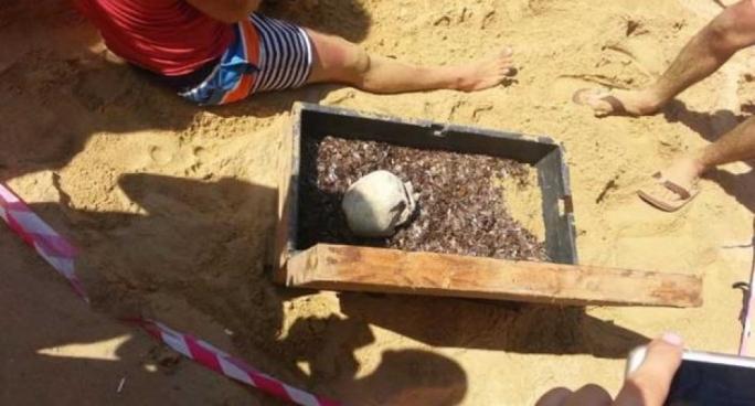 Beach-goers gather around the fake human skull