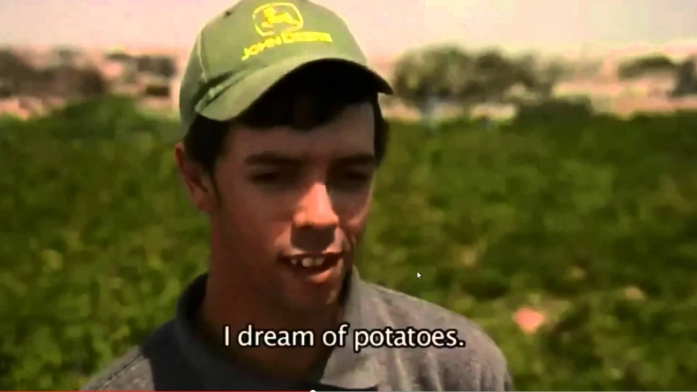 I dreamed a dream of potato blood: the story of a Maltese viral sensation