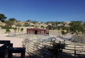 Planned zoo in Rabat has no permits from veterinary department