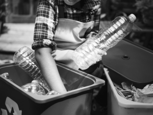 Plastic bottle recycling: a significant culture change