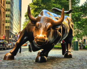 Bulls in the markets | Calamatta Cuschieri