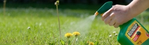 Weed killer traces in urine samples presaged WHO's cancer claims