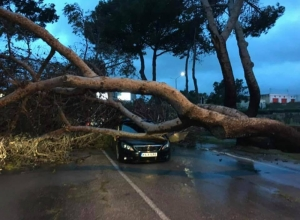 Updated | Gale force winds cause disruption, force parties to cancel political events