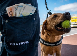 Customs dog sniffs out €22,000 in undeclared cash