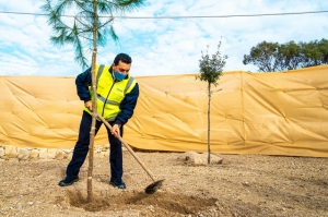 First trees planted in former Wied Fulija landfill