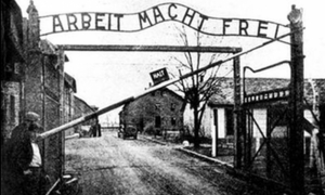 'The Holocaust never happened'