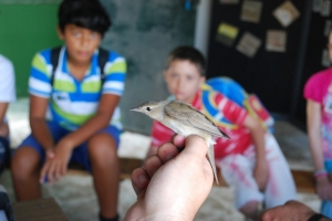 BirdLife organise 'warder experience' for children