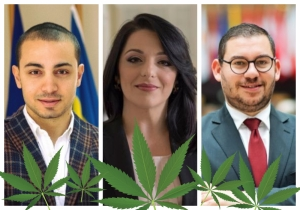 Updated | Labour exponents call out Julia Farrugia Portelli over cannabis stance