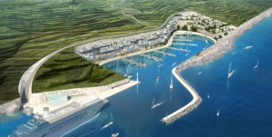 Posidonia meadows stand in the way of Qala project