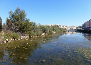 Fate of Killifish main concern during PA meeting on Magħluq dredging