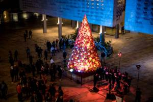 [IN PICTURES] Valletta 2018 lights Mdina Glass tree