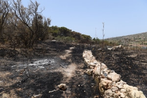 [WATCH] Miżieb wildfire leads to management plan for the vast reserve
