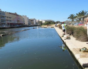 Marsaskala's il-Maghluq saline marshland gets long overdue clean up