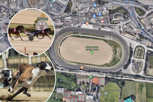 References to dog racing removed as concession for Marsa racetrack is approved