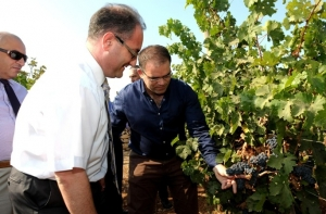 [WATCH] Updated | PN say vino-tax will harm local wine industry