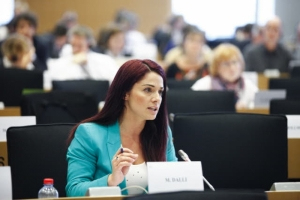 Dalli takes swipe at 'rule of law' MEPs over concerns on impartiality