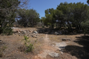 Hunters' Miżieb and Aħrax woodland deal challenged in court by NGOs