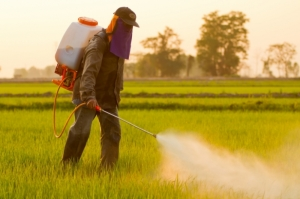 Largest-ever haul of illegal pesticides seized in Europe