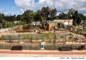 New pond at Ta' Qali National Park