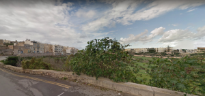 Largest Maltese fig trees threatened by Rabat promenade