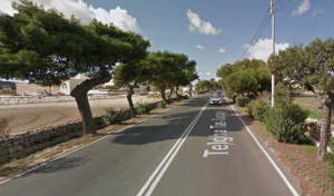 Government denies hundreds of trees in Rabat will be uprooted for major road project