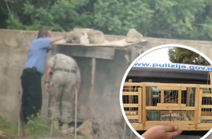 [WATCH] Police break down trapping hide's door after poacher locks himself in