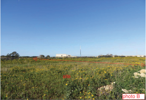 3,000 sqm ODZ petrol station proposed in Zejtun