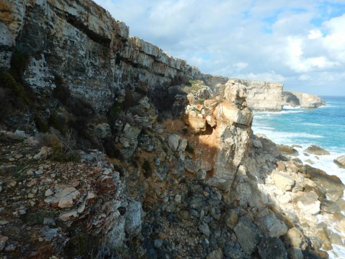L-Irdum tal-Madonnaisoneofthefewplaceswhereallthreeseabirdspecies (Scopoli's Shearwater, Yelkouan Shearwater and Storm-petrel) nest simultaneously in the Maltese Islands. (Photo: Paulo Lago)