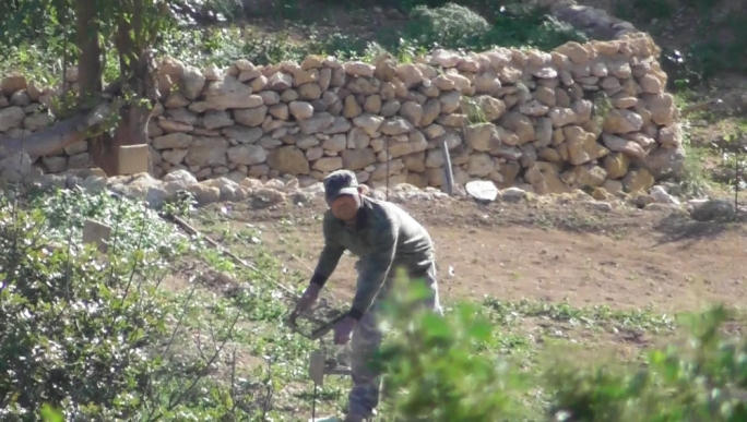 Bird trappers in Gozo caught poaching claimed they were scientists