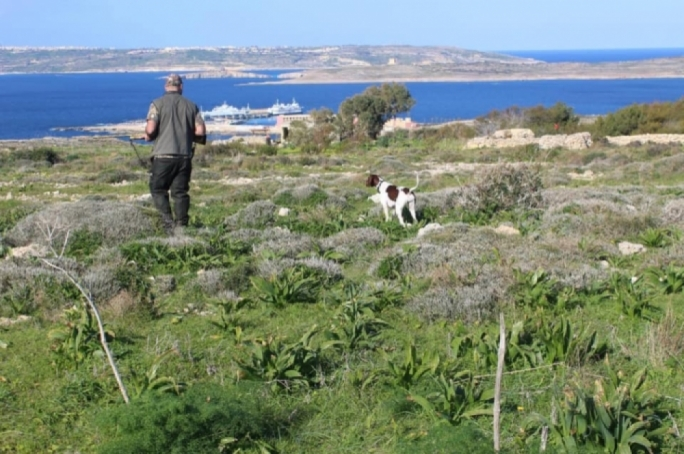 Coalition not against hunting at Miżieb, l-Aħrax but lands must not be administered by FKNK