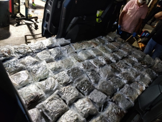 Romanian brothers deny charges after 31kg drug bust