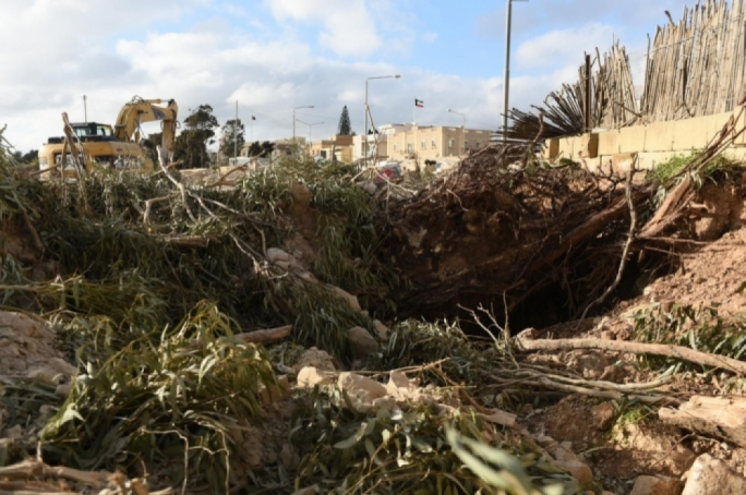 A cluster of mature almond trees along the Central Link route in the vicinity of the Attard traffic lights has been obliterated