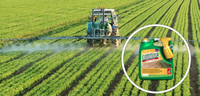 Monsanto's popular product glyphosate, which is the active ingredient in Roundup