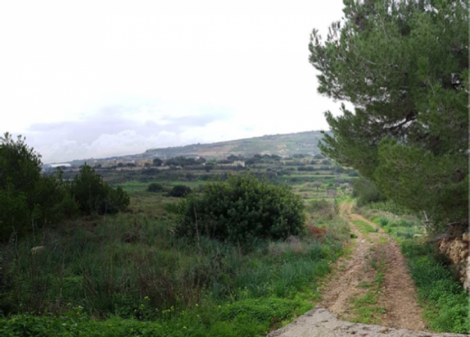 A new application at Mgarr for agritourism is set over a massive area of 142,000 square metres