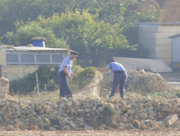 Police officers removing an illegal clap net near Sannat