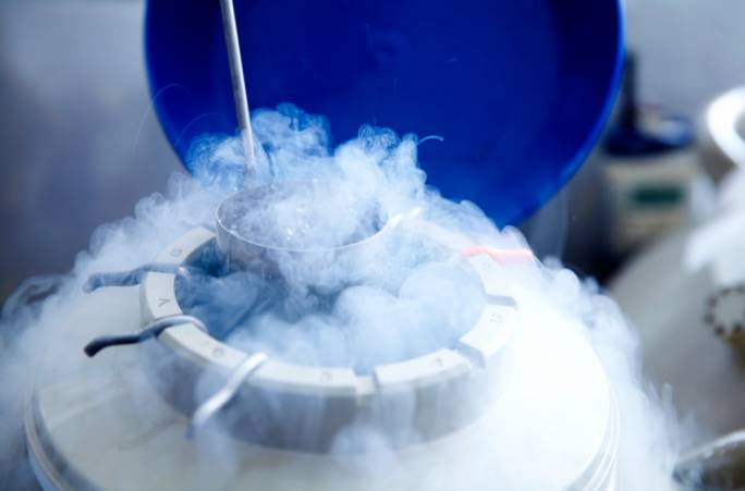 A parliamentary petition against embryo freezing has collected 8,600 signatures by Monday evening