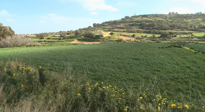 [WATCH] Central Link Project: Farmer's impassioned plea to stop destruction of agricultural land