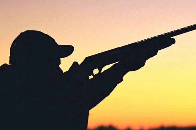 Spring hunting expected to go ahead