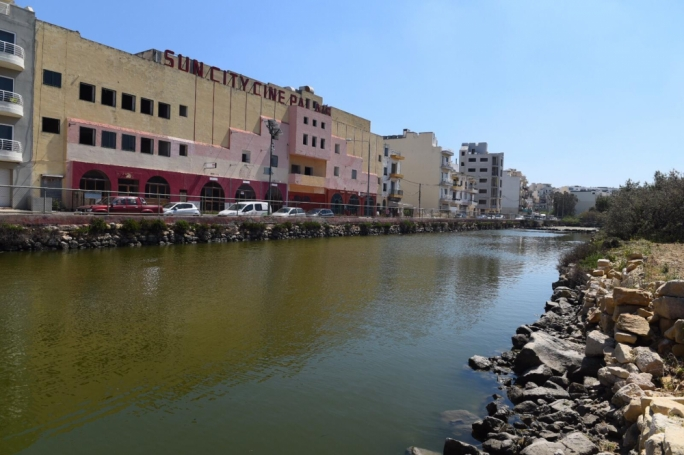 [WATCH] 500 killifish specially bred for threatened saline marshland in Marsaskala
