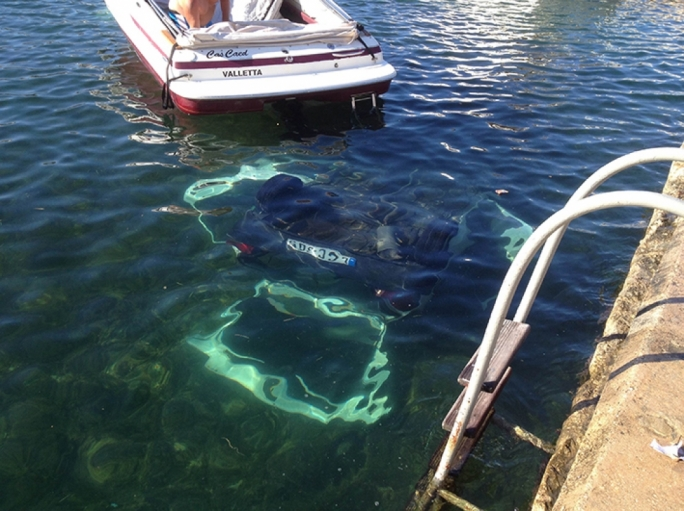 Mum, son and their new car end up in the sea