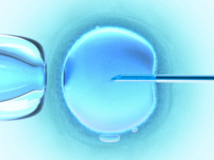 IVF is used to treat fertility or genetic problems and assist with conception