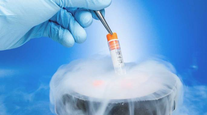How the new IVF laws have changed