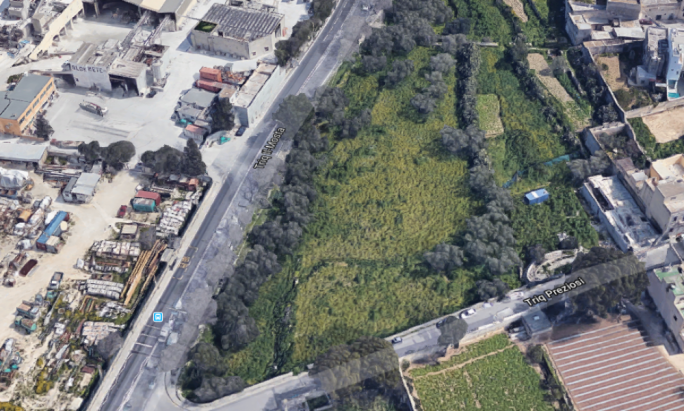 Developer's Lija folly in olive tree field gets thumbs-down