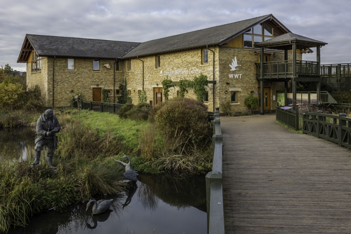 The London Wetland Centre in Barnes in the south west is home to over 200 species of birds