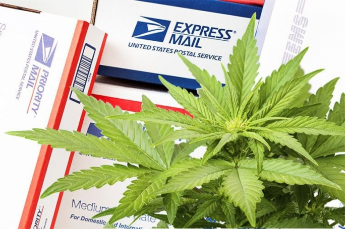 Woman arrested after receiving 600g of cannabis by post from the US