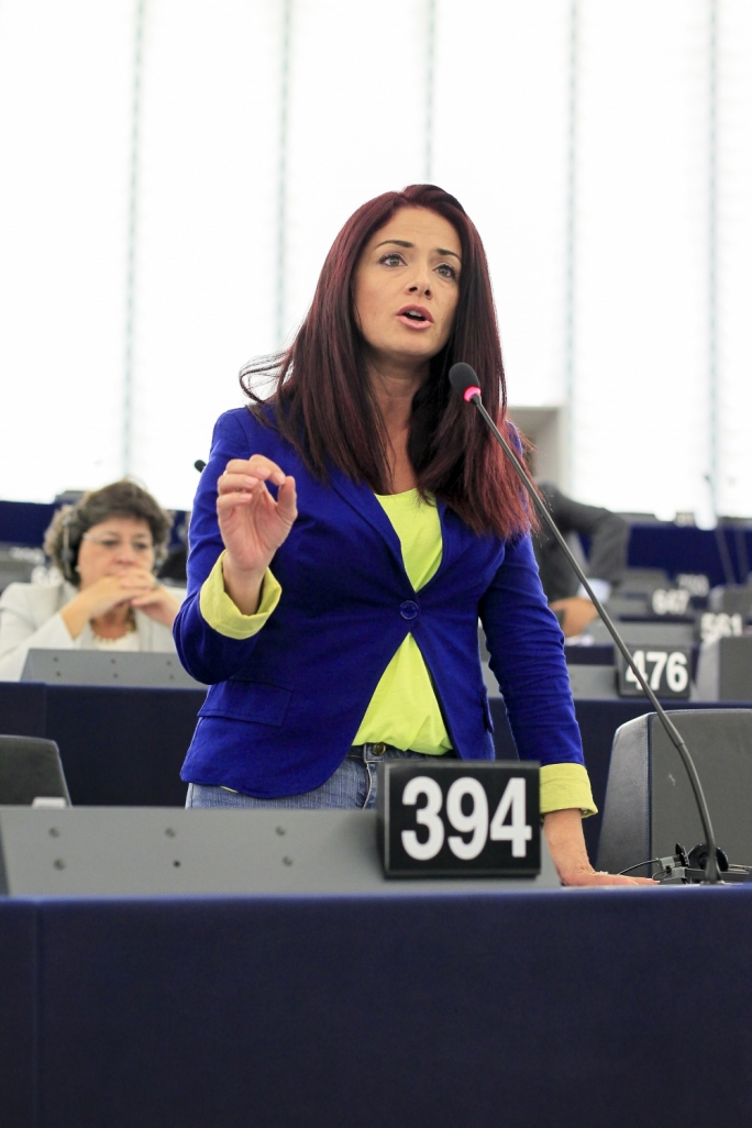 Maltese MEP urges immediate action on Libya