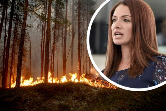 Climate change emergency needs concrete action not empty rhetoric, Miriam Dalli says